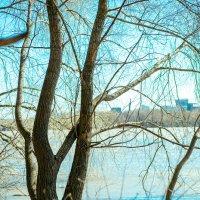 Весенняя река :: Катерина Орлова