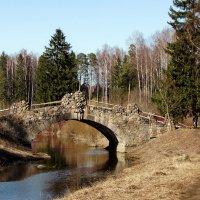 Новосильвийский мост :: Ирина Румянцева