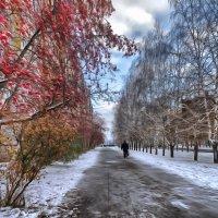 Слева - осень, справо - зима. Кемерово, октябрь :: Edward Metlinov