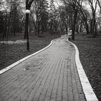 Дорожки Мариинского парка. :: Андрий Майковский