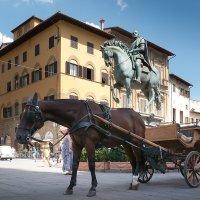 На площади две лошади стояли :: Руслан Гончар