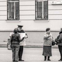 Протокол :: Владимир Салапонов