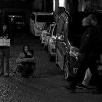 ...лейтмотив стамбульских улиц... :: Ольга Нарышкова