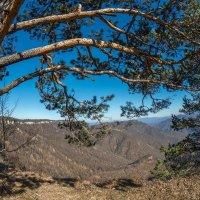 Весна в горах Адыгеи :: anatoly Gaponenko