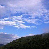 Горы Адыгей :: Александра Полякова-Костова