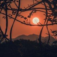 Тайский закат :: Мария Крючкова