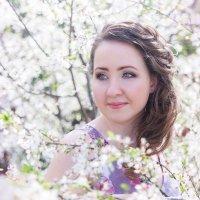 Вишневый цвет.. :: Наталья Кирсанова