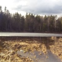 Весна2016 :: Вячеслав