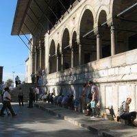 Перед входом в мечеть :: Margarita Pavlova