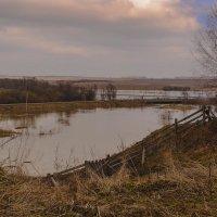 Когда река приходит в гости... :: Владимир Хиль