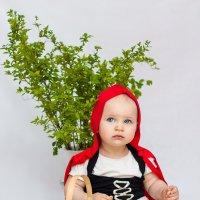 Красная шапочка :: Женечка Зяленая