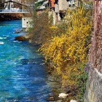 Живописная река в маленьком городке на севере Франции :: Татьяна Сафронова