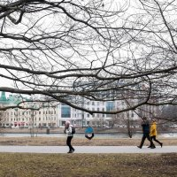 Весна :: Елена Кириллова