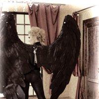Мечущийся в клетке Ангел :: Albina