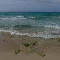 Прогуливаясь вдоль берега. Атлантический океан (Куба) :: Юрий Поляков