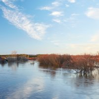 река Быстрица в разливе :: Ekatrina Kireeva