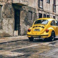 Volkswagen beetle :: Arman S