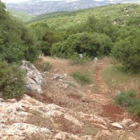 Пейзажи Иордании :: Ирина
