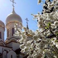 Купола :: Alexander Varykhanov