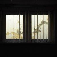 Вид из окна,...на современный городской пейзаж... :: Анна Смирнова