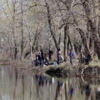 Весенняя рыбалка :: Dr. Olver  ( ОлегЪ )