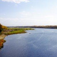 Берега помнящие Степана Разина...река Ахтуба. :: Евгений Клинков