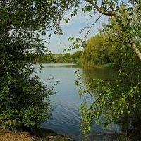 У озера :: Alexander Andronik