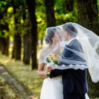 Свадьба :: Алексей Чипчиу