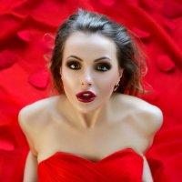 Леди в красном :: Любовь Синица