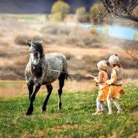 Укротительницы лошадок. :: Еления Харченко