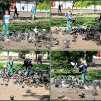 Весна, дети и голуби :: Нина Бутко