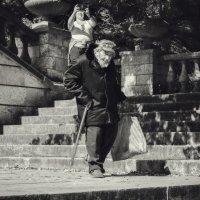 На Большой Митридатской лестнице. :: Анатолий Щербак