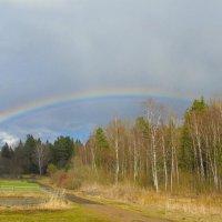 Апрель... радуга над лесом... :: Анатолий Антонов