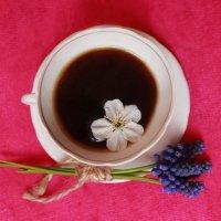 Утренний кофе :: YeS ph