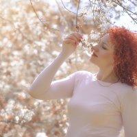 Аромат оранжевой весны :: Антон Сологубов