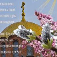 С Вербным Воскресеньем! :: galina tihonova