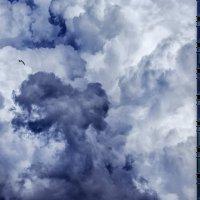 Faces of the Sky :: Ruslan Bolgov