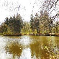 Апрельский пейзаж :: Маргарита Батырева