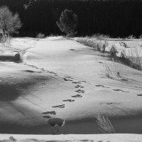 Ночь :: Arcadii Mayrhofen