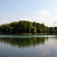 В Измайловском парке :: Владимир Болдырев