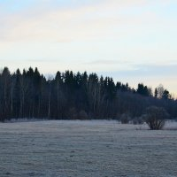 Морозное утро :: Михаил Сугрин
