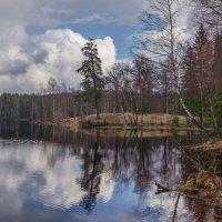 Гляжу в озера синие... :: Наталья Иванова