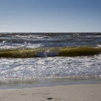 Морской волной шумит прибой :: Виталий Латышонок
