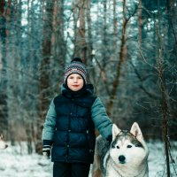 волк :: Ольга Никонорова