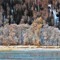 Зимний берег :: Сергей Чиняев