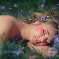 Весенние сны.. :: Ольга Егорова