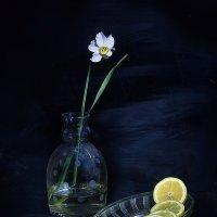 Лимон :: Наталья S