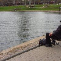 Так ведь и философом станешь! Рыбы же нет! :: Андрей Лукьянов