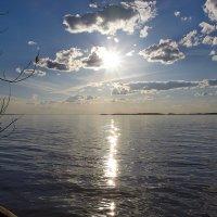 солнечный день :: Седа Ковтун