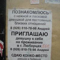 Забавное объявление :: Ольга Кривых